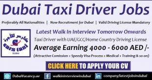 Dubai Taxi Driver Training