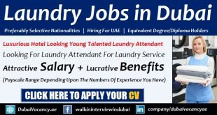 Laundry Jobs in Dubai